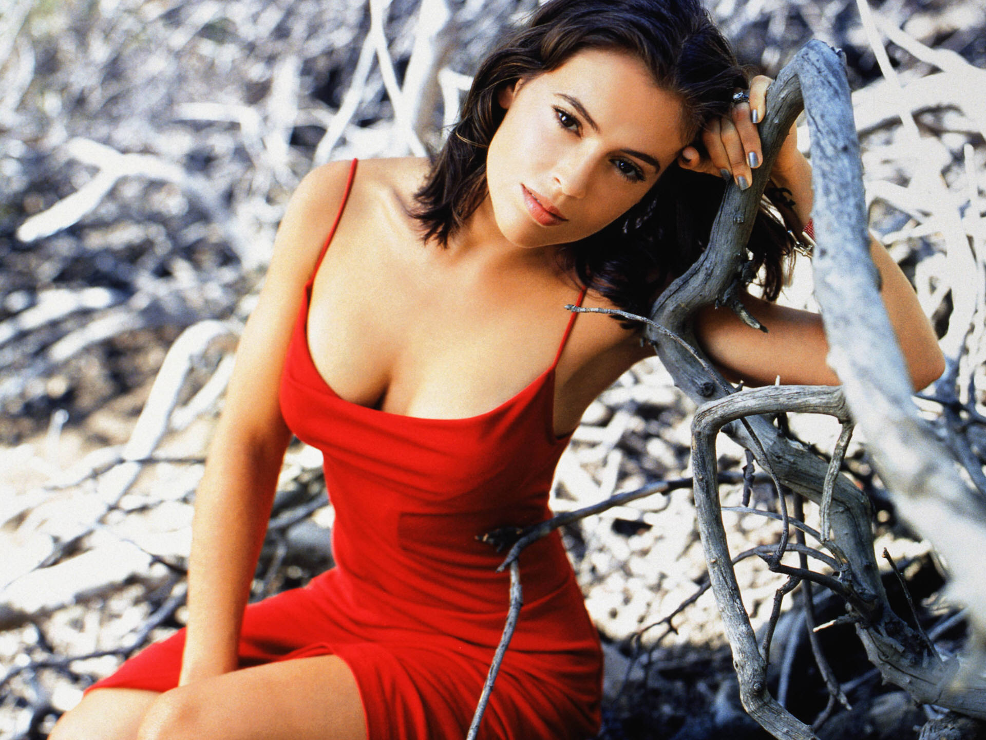 charmed-alyssa-milano-sexy-in-red-dress-hd-404898.jpg (1920×1440)