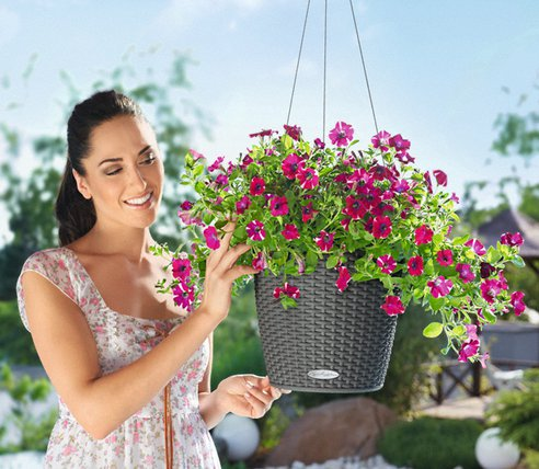self-watering-hanging-planter.png.492x0_q85_crop-smart